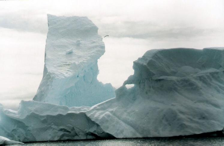 World Travel Photos :: Ice and Water :: Antarctica
