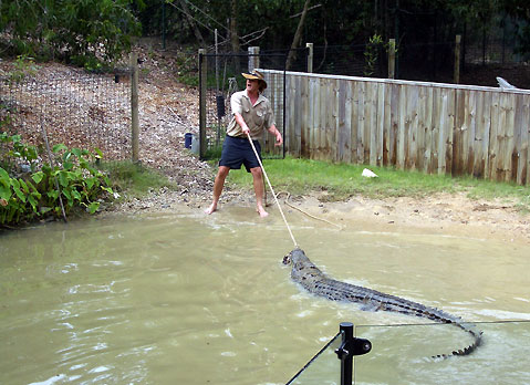 World Travel Photos :: Australia :: Australia. Crocodile Farm