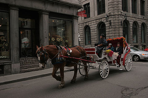 World Travel Photos :: RomKri :: Montreal. Old city