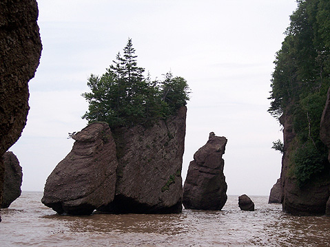 World Travel Photos :: Canada - New Brunswick :: New Brunswick. Hopewell Rocks