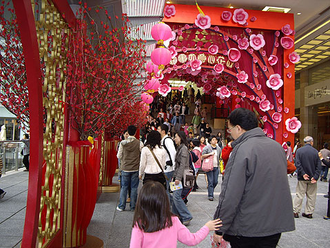 World Travel Photos :: China - Hong Kong :: Hing Kong. Chinese New Year Decorations (2007)