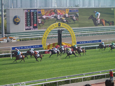 World Travel Photos :: China - Hong Kong :: Hong Kong. Horse Racing in Shatin course