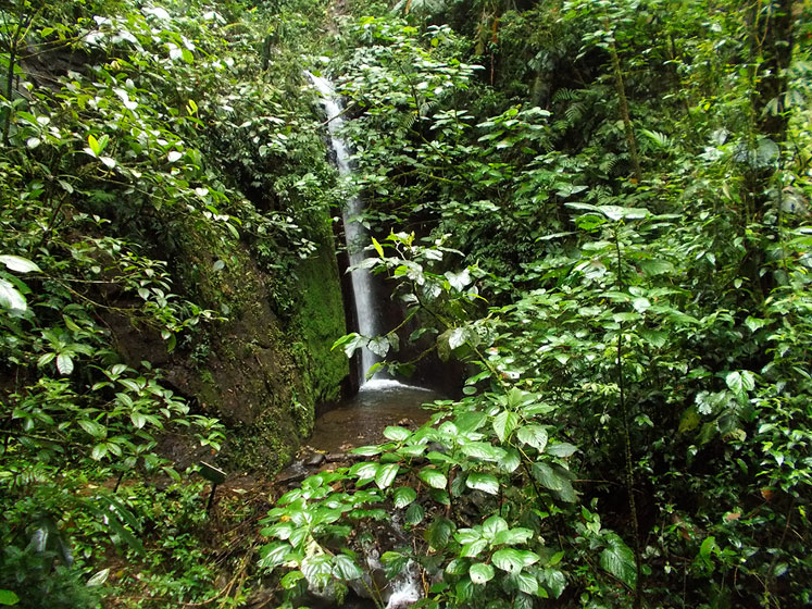 World Travel Photos :: Waterfalls :: Costa Rica. A waterfall in the rainforest of Park Arenal