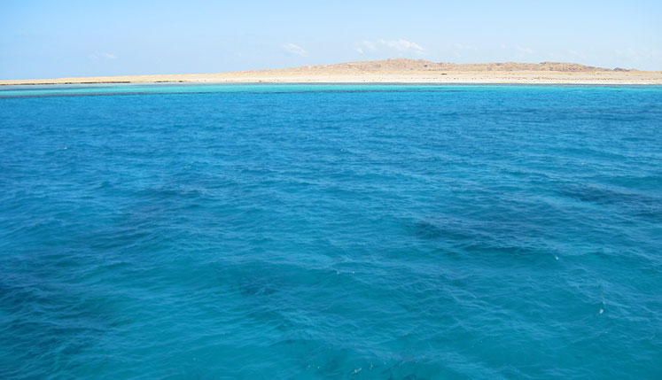 World Travel Photos :: Egypt :: Egypt. Red sea