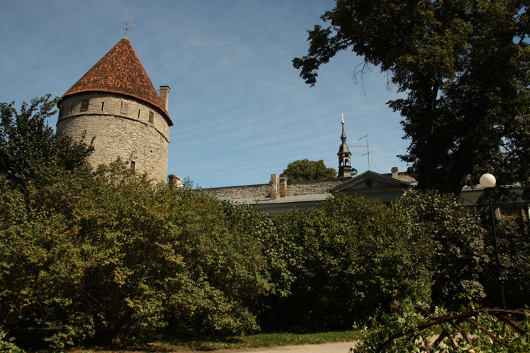 World Travel Photos :: visitor :: Tallinn. Old city