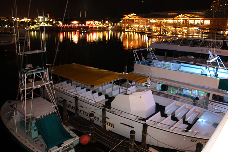 World Travel Photos :: USA - Florida - Miami :: Miami. Cruise yachts at the Bayside
