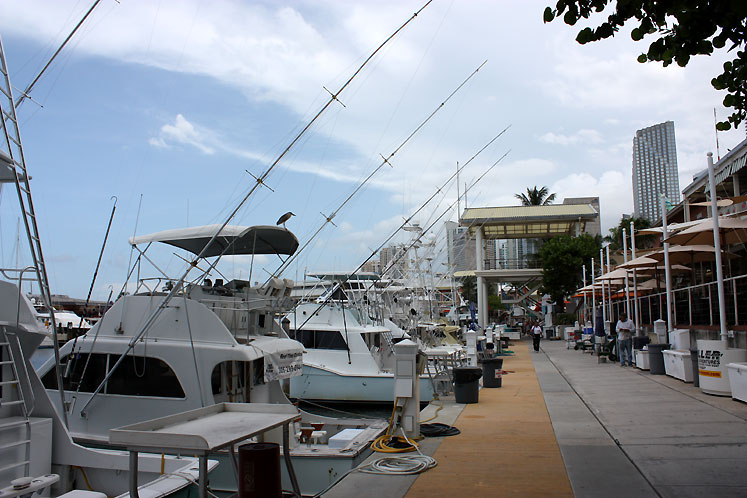 World Travel Photos :: USA - Florida - Miami :: Miami. Yachts along the harbor at the bayside