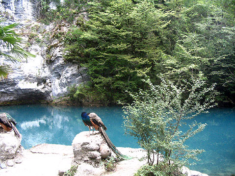 World Travel Photos :: Olga :: Abkhazia. Blue Lake