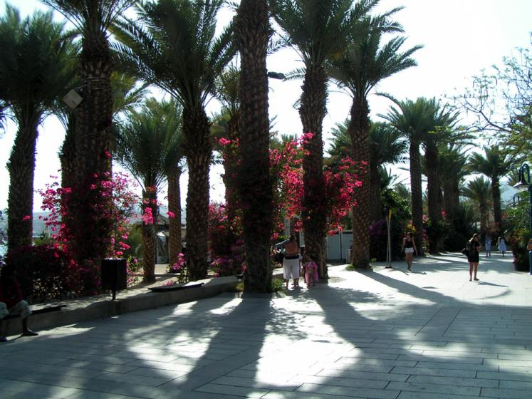 World Travel Photos :: Phleisheker Izzya :: Eilat
