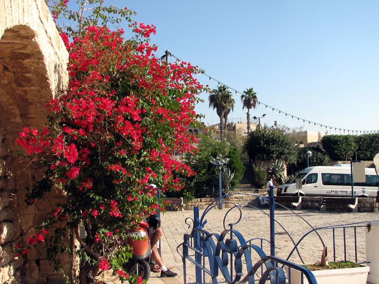 World Travel Photos :: Israel - Jaffa :: Jaffa