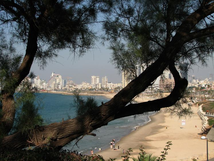 World Travel Photos :: Israel - Jaffa :: View on Tel-Aviv from Jaffa