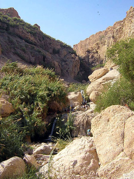 World Travel Photos :: Desert :: Israel. Ein-Gedi Conservation Area