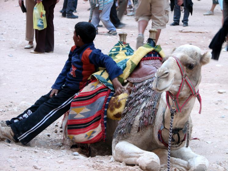World Travel Photos :: Jordan - Petra :: Petra. Camel rides
