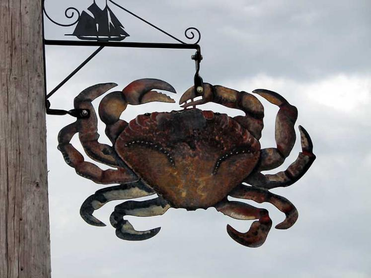 World Travel Photos :: Canada - Nova Scotia - Lunenburg :: Lunenburg. Crab