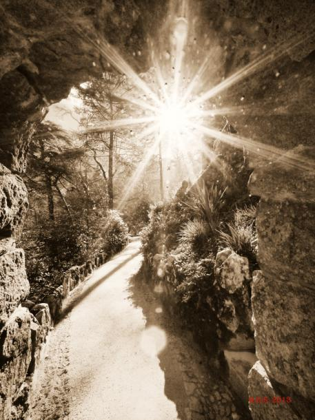 World Travel Photos :: Portugal :: Portugal. Quinta da Regaleira - a path in the park