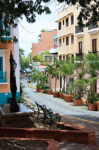 World Travel Photos :: Puerto-Rico - San Juan :: Puerto-Rico. San Juan - pot-planted trees along the street
