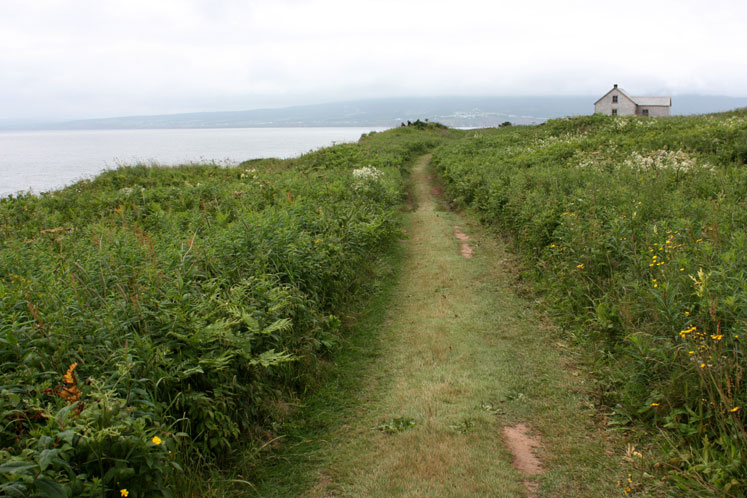 World Travel Photos :: Landscapes :: Quebec. A trail going around Bonaventure Island