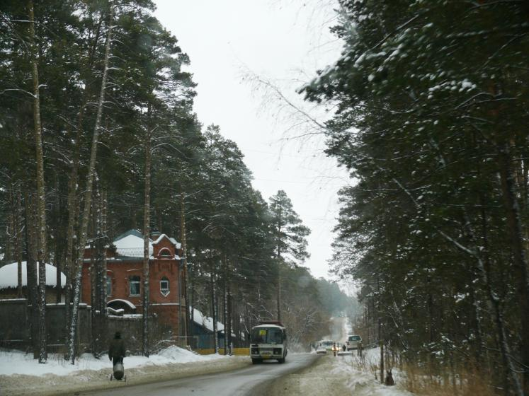 World Travel Photos :: Валентина :: Old trees along the road in Tomsk, Russia