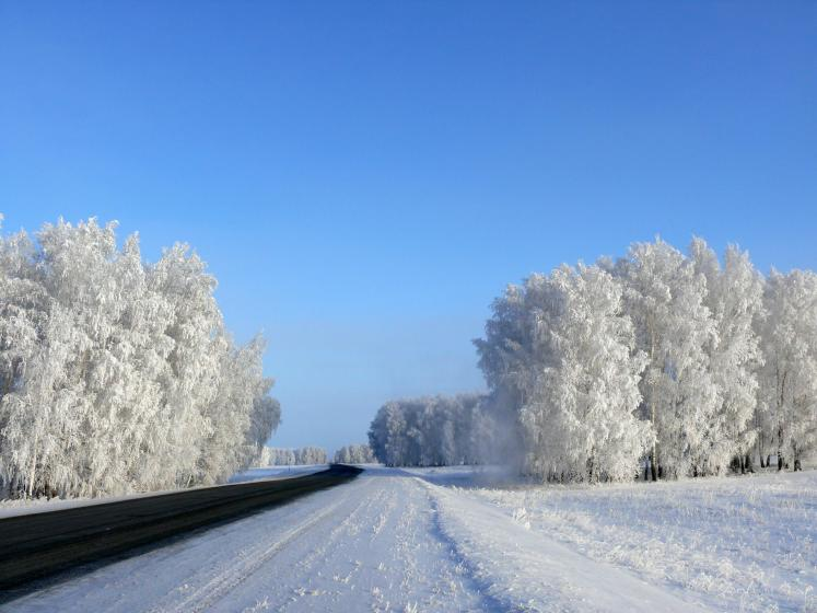 World Travel Photos :: Colors - Blanc :: Russia. Omsk District - a winter silence