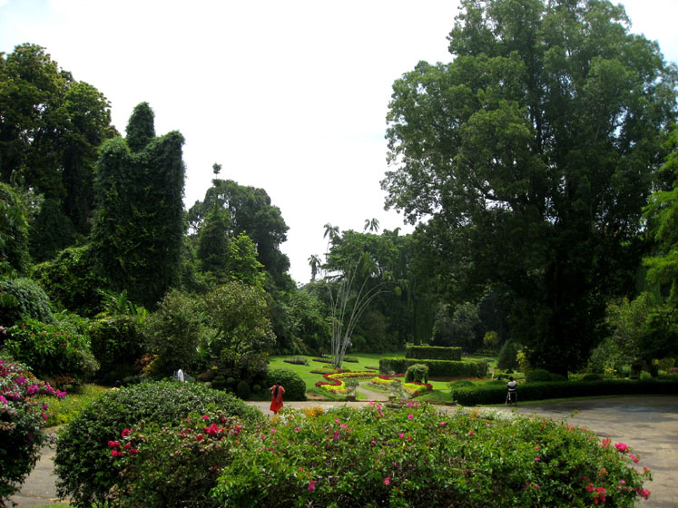 World Travel Photos :: Sri Lanka :: Sri Lanka. Botanical Garden in Kandi