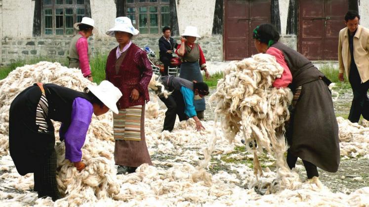 World Travel Photos :: Tibet :: Shigatse. Rug factory