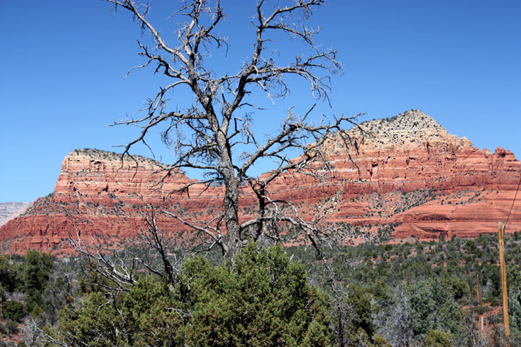 World Travel Photos :: USA - Arizona - Sedona :: Arizona. A view of the landscape around Sedona