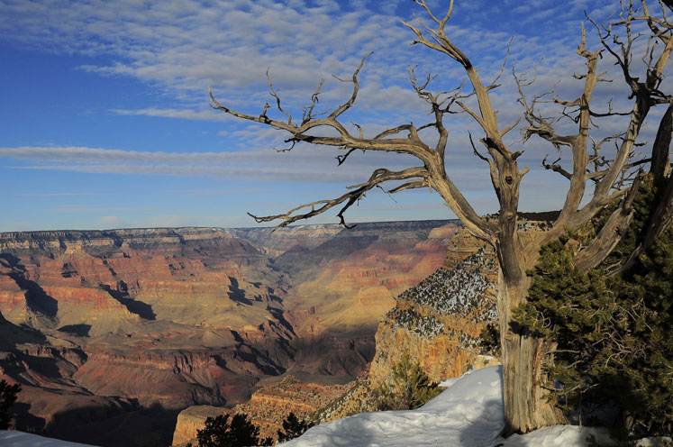 World Travel Photos :: refko :: Grand Canyon