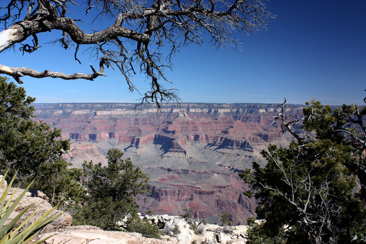 World Travel Photos :: Serenity :: Grand Canyon in March