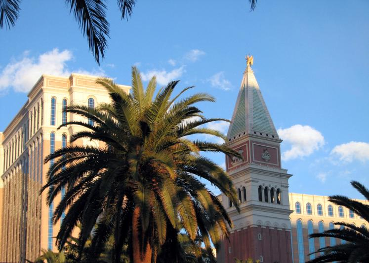 World Travel Photos :: USA - Nevada - Las Vegas :: Las Vegas. The Venetian & palm tree