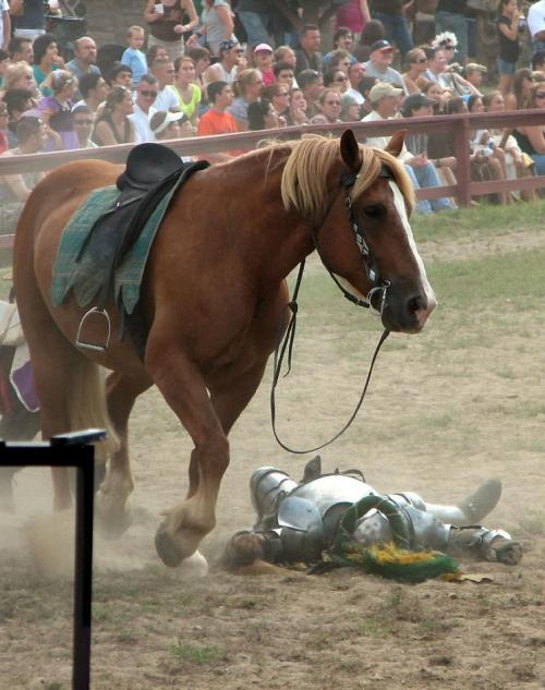 World Travel Photos :: Jousting :: Michigan. Renaissance Festival - Knight's horse