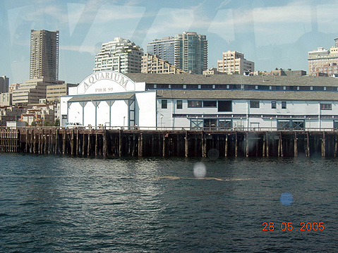 World Travel Photos :: USA - Misc :: Seattle. Aquarium