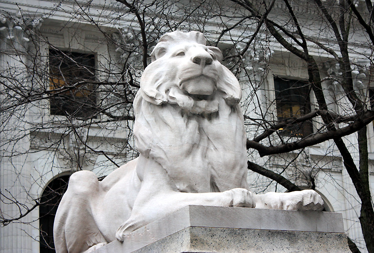 World Travel Photos :: 5th Avenue :: NYC. A lion guarding the entrance to the Public Library on Fifth Ave.